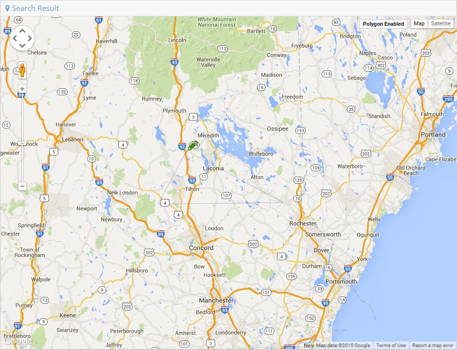Polygon Map Search – Narrative1